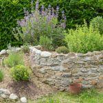 Inspiration pur: Die vielversprechendsten Gartentrends des Jahres bringen uns viele neue Ideen
