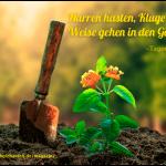 Der kleine Gartenphilosoph – Sprüche zum Nachdenken für den Juli