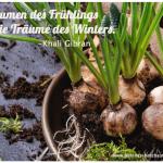 Der kleine Gartenphilosoph: Sprüche zum Nachdenken für den März