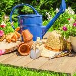 Butenas Gartenkalender – Juli. Ernten und Schneiden