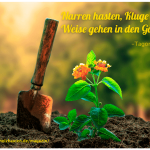 Der kleine Gartenphilosoph – Sprüche zum Nachdenken (1)