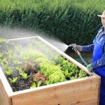 Ein Hochbeet bauen – Ihr Plan für den Herbst