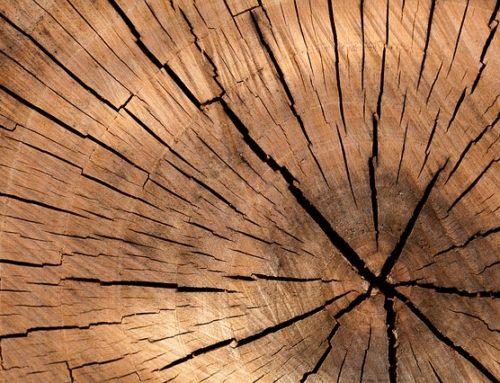 Arbeitsgemeinschaft Holz