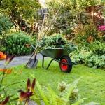 Diese Gartengeräte brauchen Sie wirklich