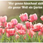 Der kleine Gartenphilosoph: Sprüche zum Nachdenken für den April