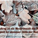 Der kleine Gartenphilosoph: Sprüche zum Nachdenken für den November